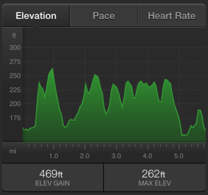 Adidas Thunder Run 24 2015 Elevation