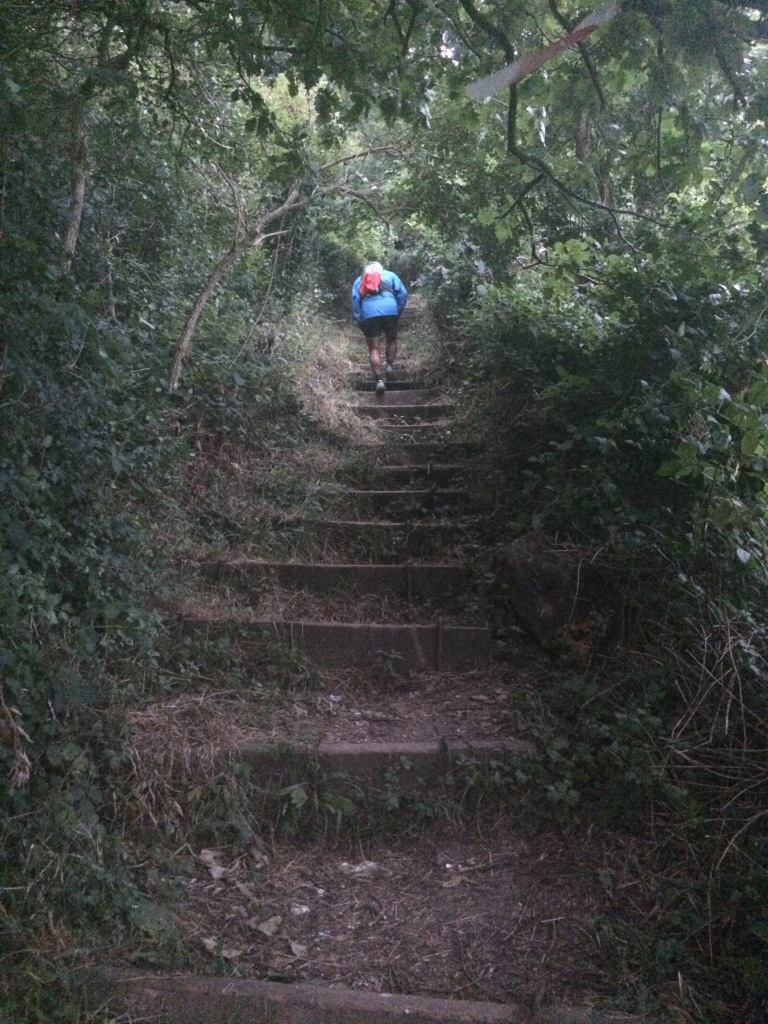 Detling Steps