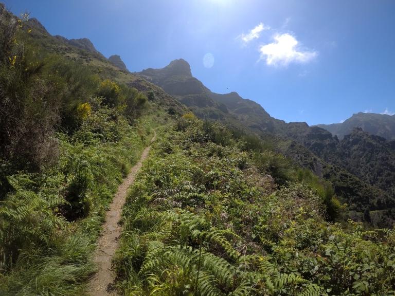 Madeira Island Ultra Trail MIUT